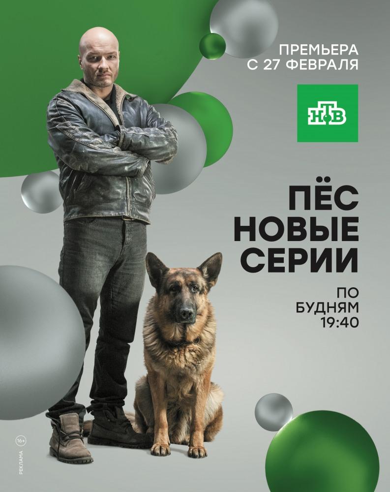 Пёс сериал 2015 2 сезон смотреть онлайн все серии.