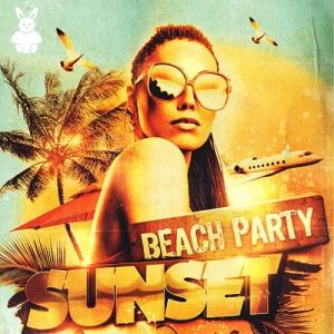 VA - Beach Party Sunset