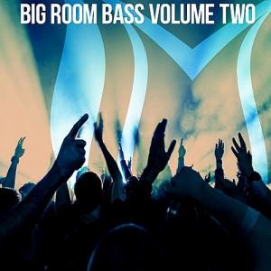 VA - Big Room Bass Vol.2