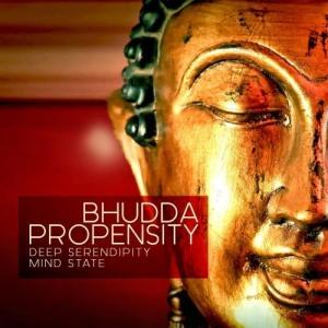VA - Bhudda Propensity (Deep Serendipity Mind State)