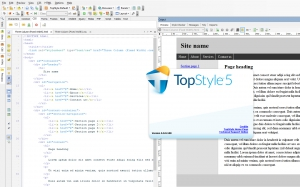 TopStyle 5.0.0.108 [En]