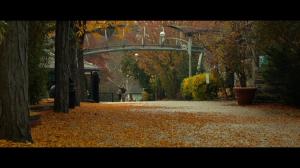 Сплит | DVD-5