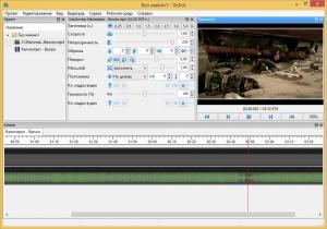Vidiot 0.3.34 + Portable [Multi/Ru]