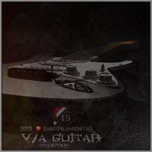 VA - Guitar Collection 15 (The End)