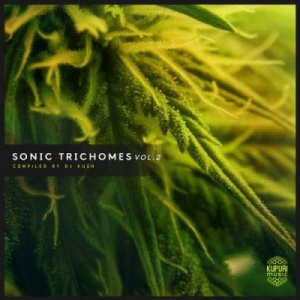 VA - Sonic Trichomes Vol.2 (Compiled by DJ Kush)