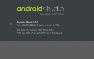 Android Studio 3.6.1 Build #AI-192.7142.36.36.6200805 [En]