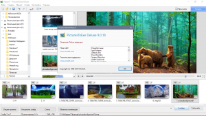 PicturesToExe Deluxe 9.0.20 RePack (& Portable) by TryRooM [Multi/Ru]
