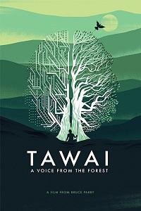Таваи: голос, идущий из леса