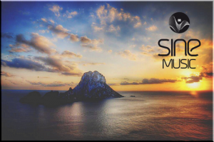 Sine Music Records presents: Compilations Collection - 29 Releases