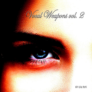 VA - Vocal Weapons Vol.2 [Compiled & Mixed by Disco Van]