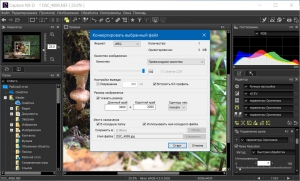 Nikon Capture NX-D 1.5.3 [Multi/Ru]