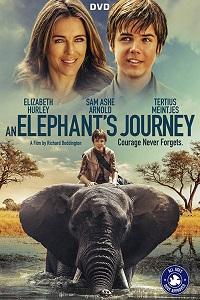 Большое путешествие слона