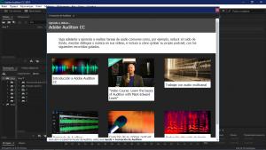 Adobe Audition CC 2019 12.1.5.3 RePack by KpoJIuK [Multi/Ru]