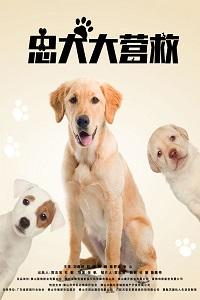 Спасите наших собак
