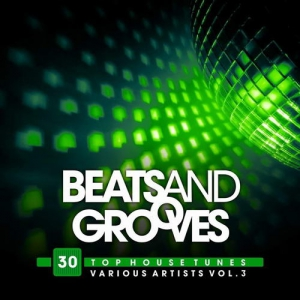 VA - Beats And Grooves (30 Top House Tunes),Vol.3