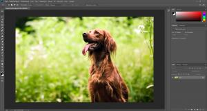 Adobe Photoshop CC 2019 v20.0.5.27259 (x64) Repack by SanLex [Multi/Ru]