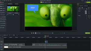 TechSmith Camtasia 2019.0.3 Build 4809 (x64) [Multi]
