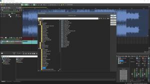 MAGIX - ACID Pro Next Suite 1.0.1 (Build 17) (x86/x64) + Content [Multi]