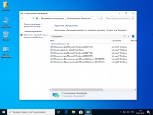 Windows 10 Pro 1903 b18362.239 x64 by SanLex (10.07.2019) [Ru]