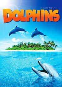 Самые красивые места планеты Земля. Дельфины