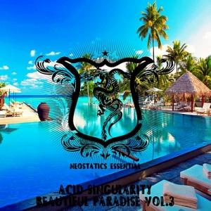 VA - Beautiful Paradise Vol.3