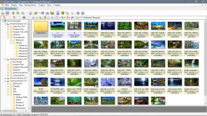 XnView 2.49.2 Complete RePack (& Portable) by D!akov [Multi/Ru]