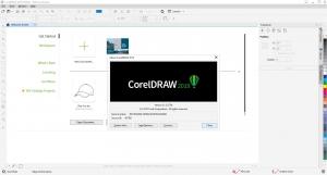 CorelDRAW Graphisc Suite 2019 21.3.0.755 [En]