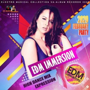 VA - EDM Immersion