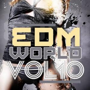 VA - EDM World Vol 10