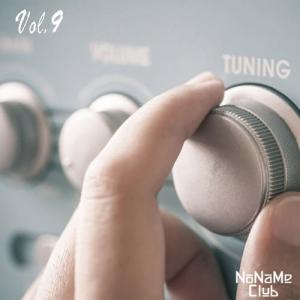 VA - Сегодня на радио хиты FM Vol.9