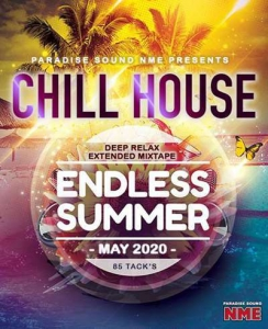 VA - Endless Summer: Chill House Electro Mix