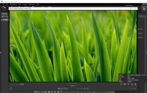 StudioLine Photo Basic 4.2.55 [Multi]