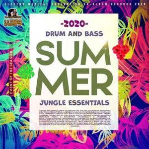 VA - Summer Bass: Jungle Essentials