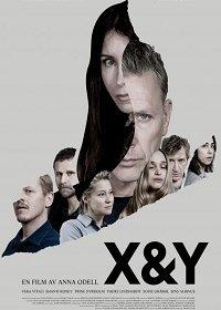 X и Y