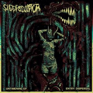 Sleepsculptor - Sleepsculptor