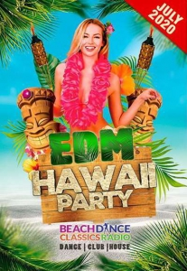 VA - EDM Hawaii Party