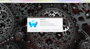 Waterfox Current 2020.08 / Classic 2020.08.1 Portable by Cento8 [Ru/En]