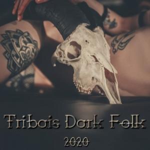VA - Tribais Dark Folk
