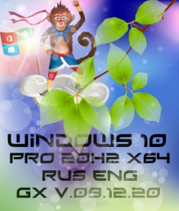 Windows 10 PRO 20H2 19042.685 [GX v.18.12.20] [Ru/En]