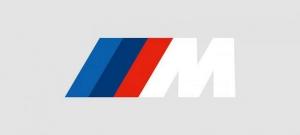 BMW PSdZData 4.29.22 Full & Lite [2021]