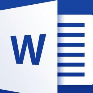 Microsoft Office Word 2007 SP3 Enterprise 12.0.6798.5000 Portable by Spirit Summer [Multi/Ru]