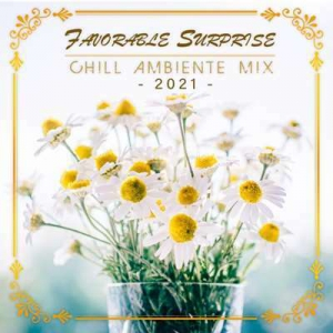 VA - Favorable Surprise: Chill Ambiente Mix