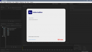 Adobe Audition 2021 14.2.0.34 RePack by KpoJIuK [Multi/Ru]