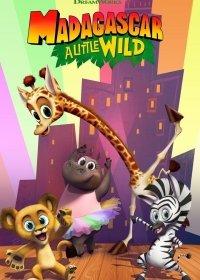 Мадагаскар: Маленькие и дикие / Мадагаскар: Маленькие звери