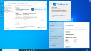 Microsoft® Windows® 10 x86-x64 Ru 21H1 8in2 Orig-Upd 05.2021 by OVGorskiy