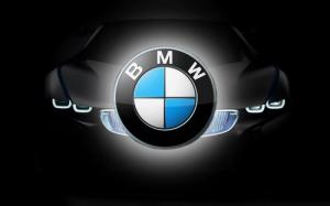 BMW ISTA-D Rheingold 4.29.30 [2021]