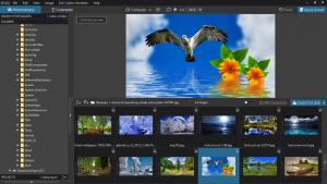 DxO PhotoLab Elite 4.3.0 Build 4580 Portable by conservator [En]
