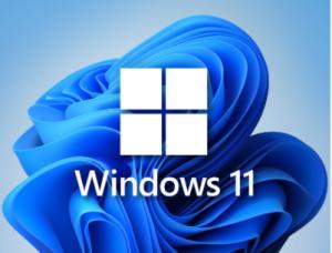 Windows 11 16in1 +/- [x86] Office 2019 by SmokieBlahBlah 2021.10.16 [Ru/En]